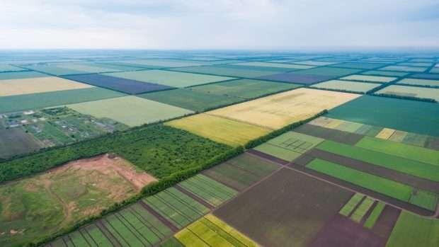 В Україні відкрився ринок землі: хто може купити, яка ціна і що заборонено